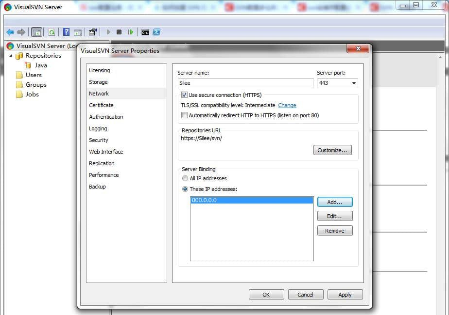 VisualSVN Server 13